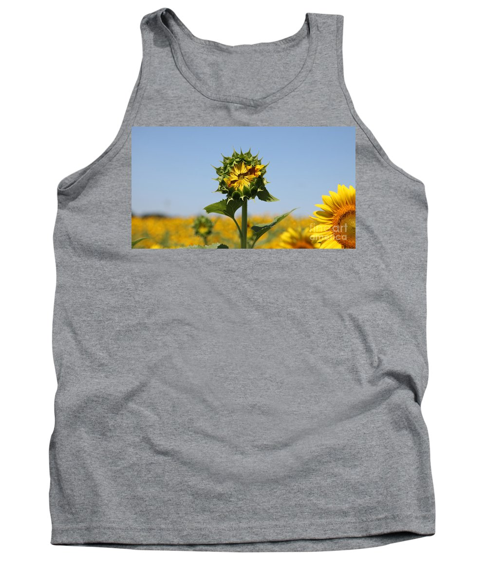 Sunflowers Tank Top featuring the photograph Competition by Amanda Barcon