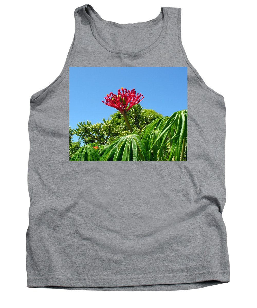 Coral; Bush; Coralbush; Weed; Flower; Leaf; Leaves; Fruit; Nut; Seed; Florida; Wild; Vacant; Lots; N Tank Top featuring the photograph Coral Bush With Flower And Fruit by Allan Hughes