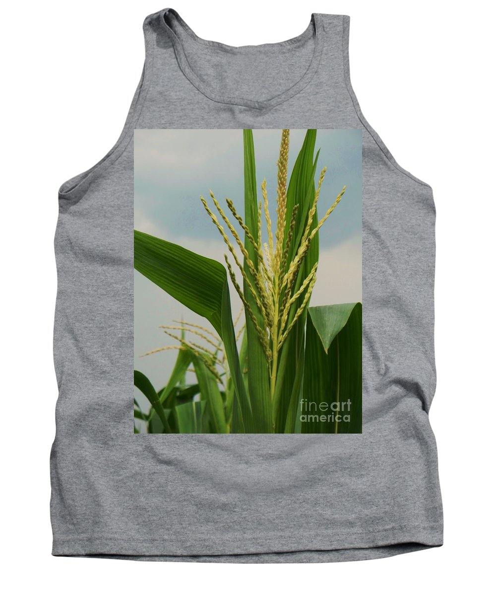 Corn Stalk Tank Top featuring the photograph Corn Stalk by Eric Schiabor