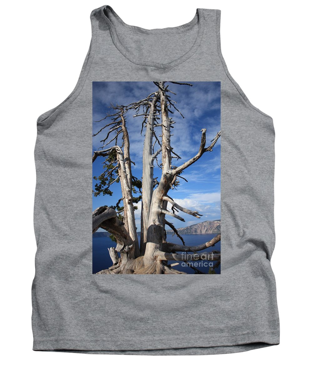 Tree Tank Top featuring the photograph Crater Lake Tree by Carol Groenen