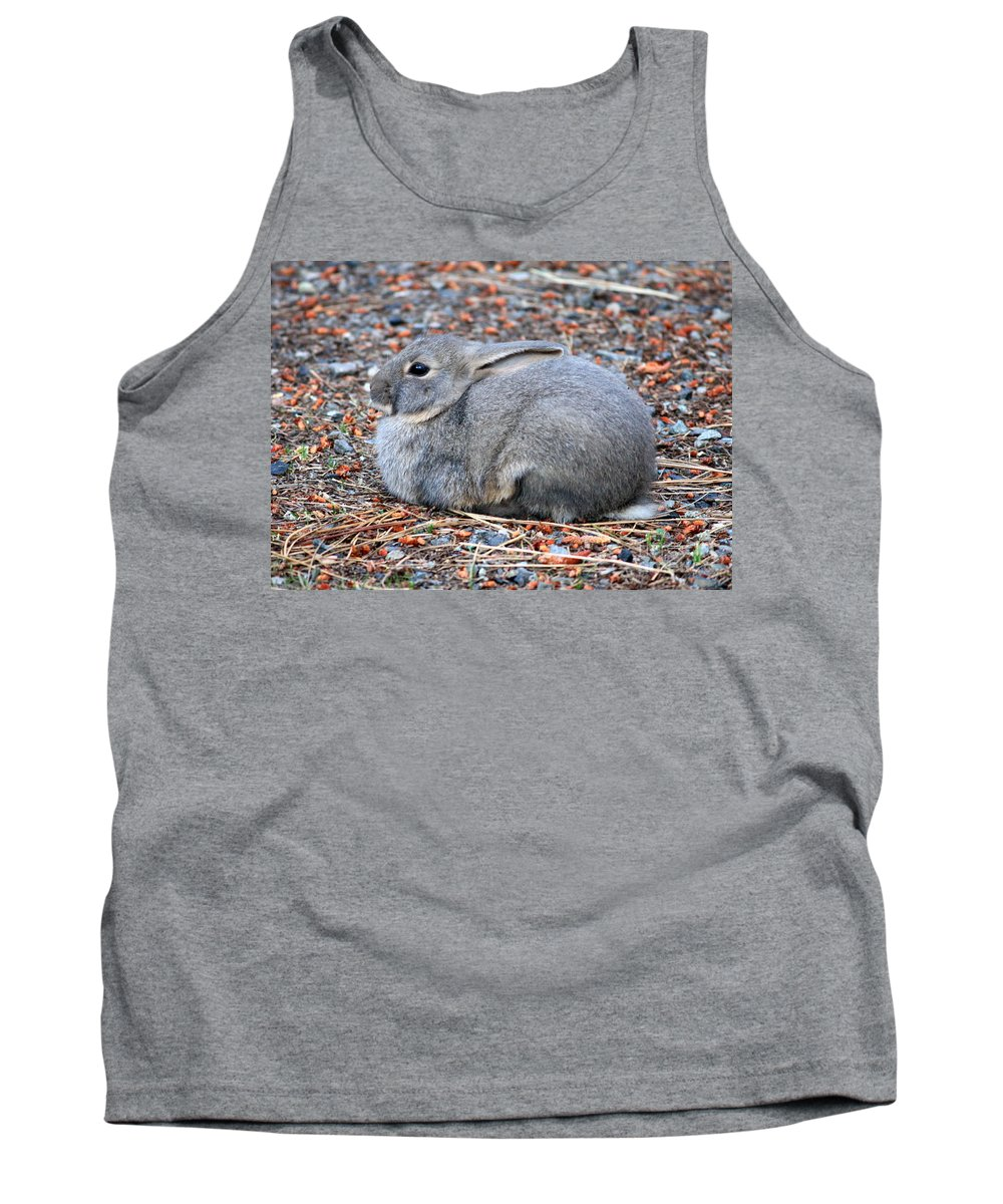 Rabbit Tank Top featuring the photograph Cuddly Campground Bunny by Carol Groenen