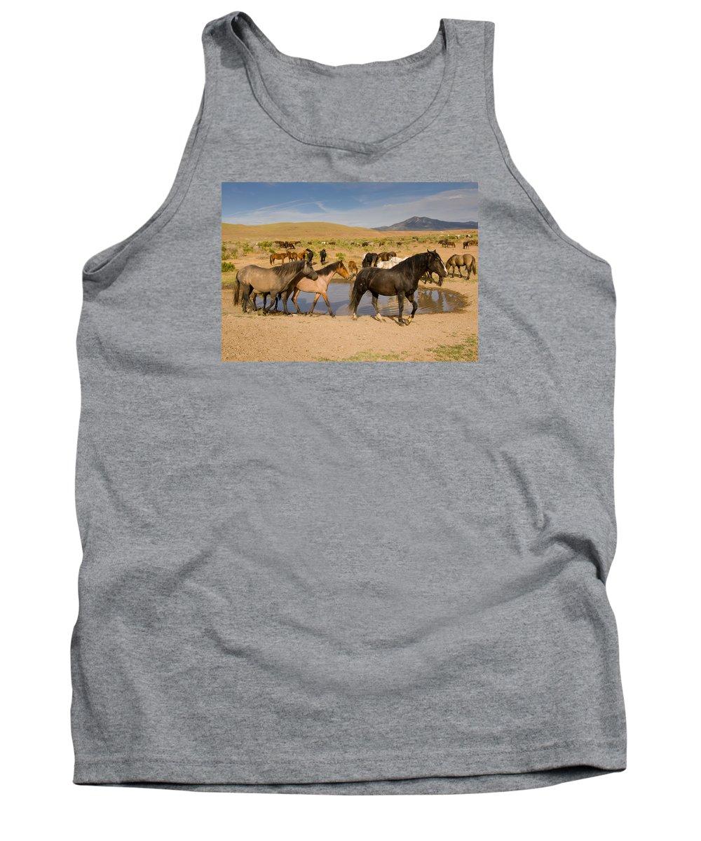 Wild Horse Tank Top featuring the photograph Desert Water by Kent Keller