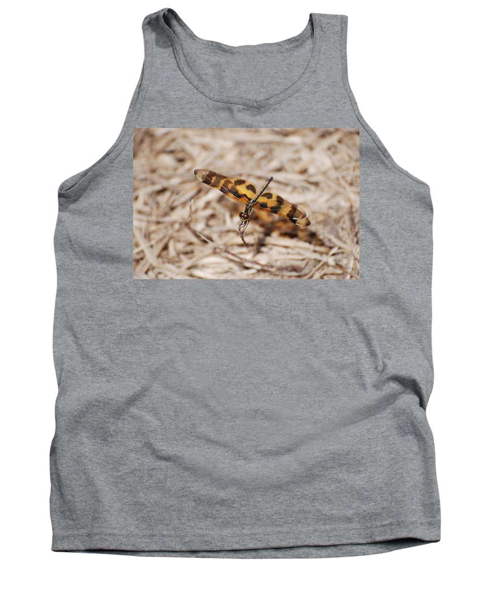 Nature Tank Top featuring the photograph Dragon Fly by Rob Hans