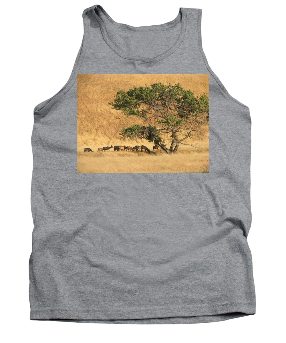 Landscapes Tank Top featuring the photograph Elk Under Tree by Karen W Meyer