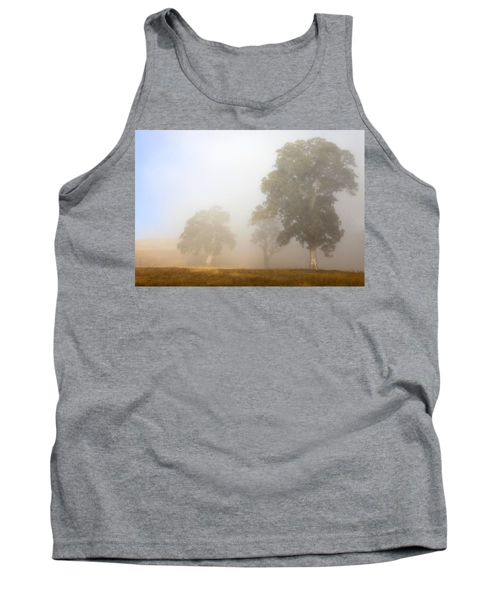 Gum Tree Tank Top featuring the photograph Emerging From The Fog by Mike Dawson