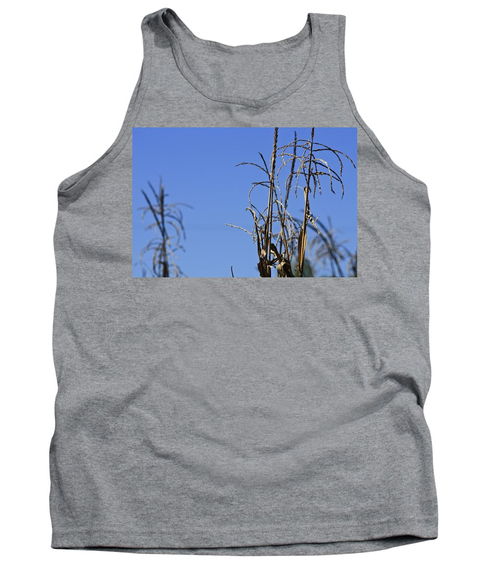 Corn Tank Top featuring the photograph End Of Season by Teresa Mucha