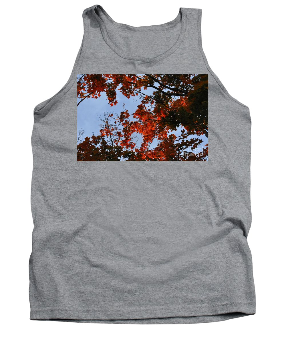 Leaves Tank Top featuring the photograph Fall Leaves by Vicky Tubb