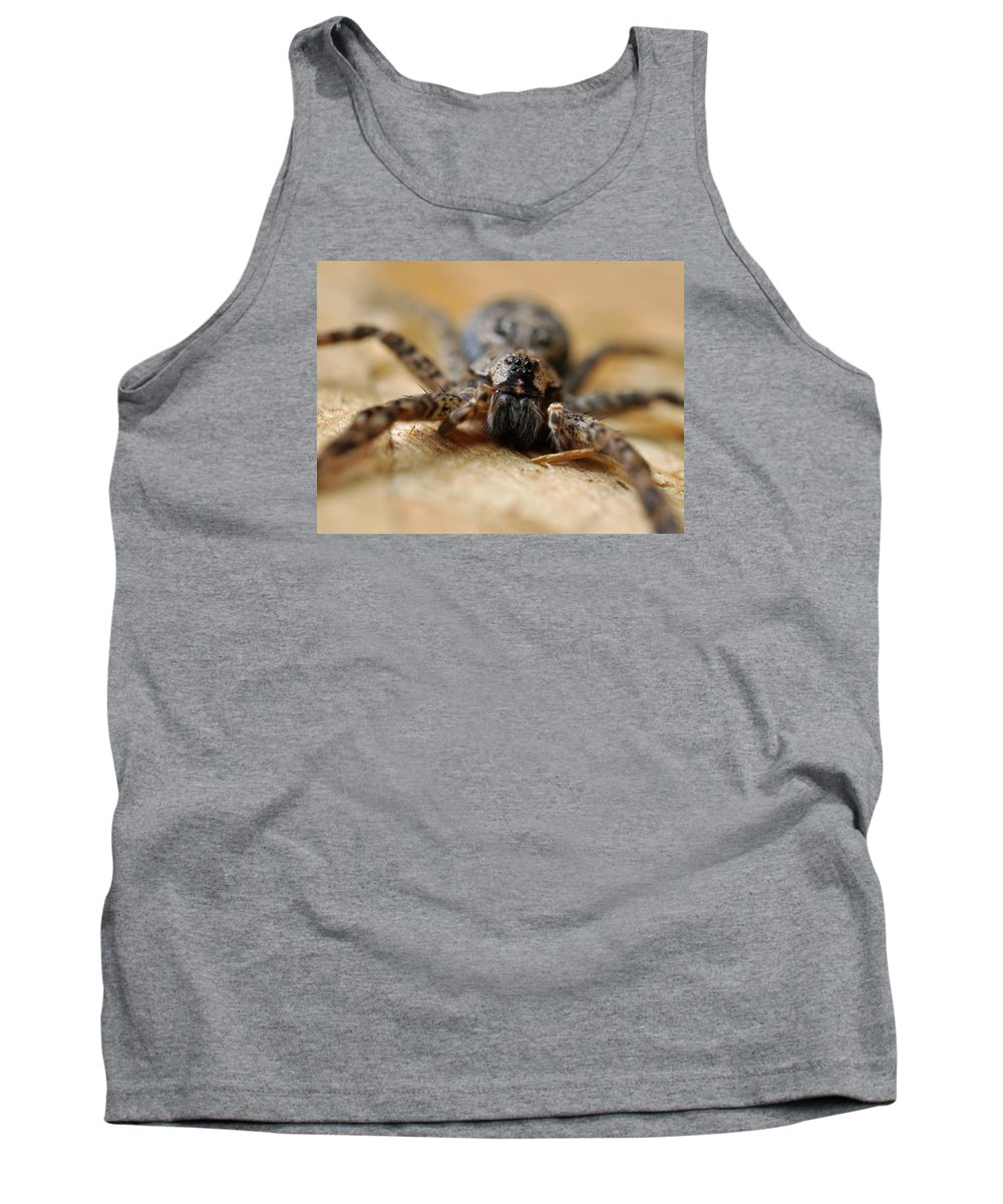Spider Tank Top featuring the photograph Spider Close Up by Glenn Gordon