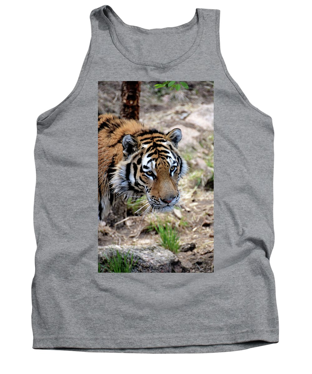 Tiger Tank Top featuring the photograph Feline Focus by Angelina Vick