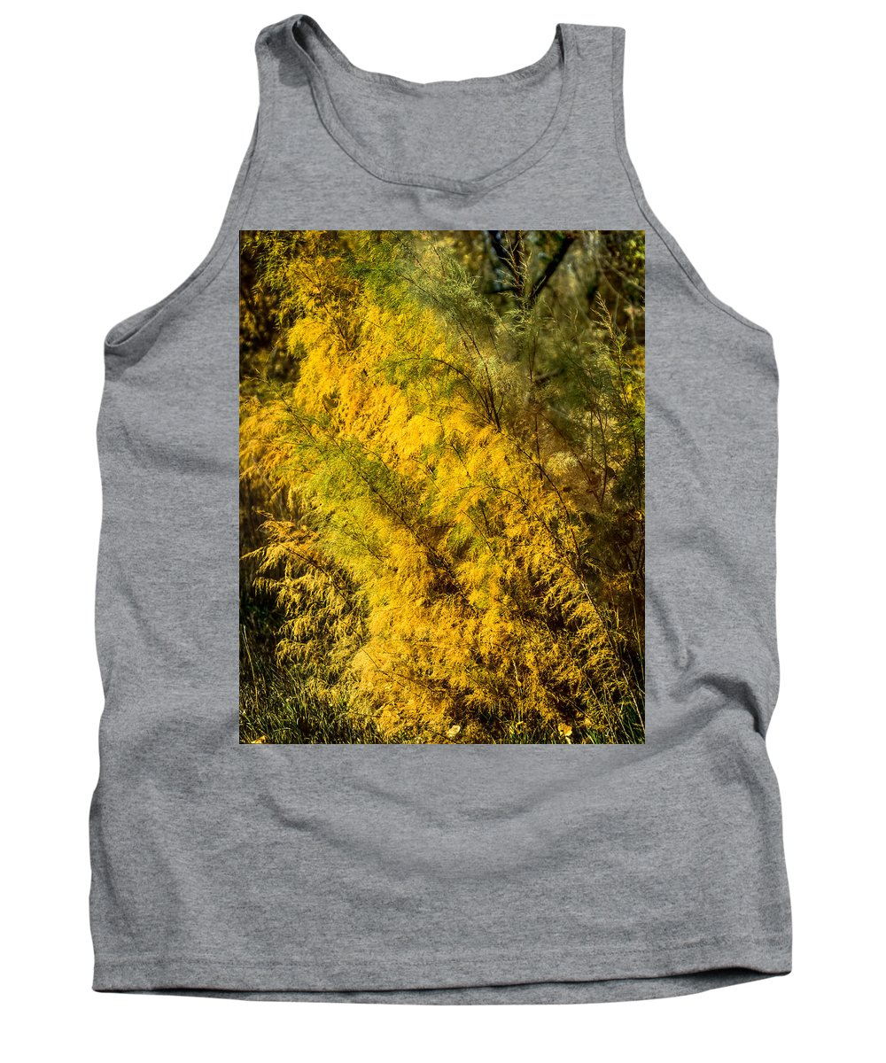 Fall Color Tank Top featuring the photograph Fens In Fall Color by John Brink