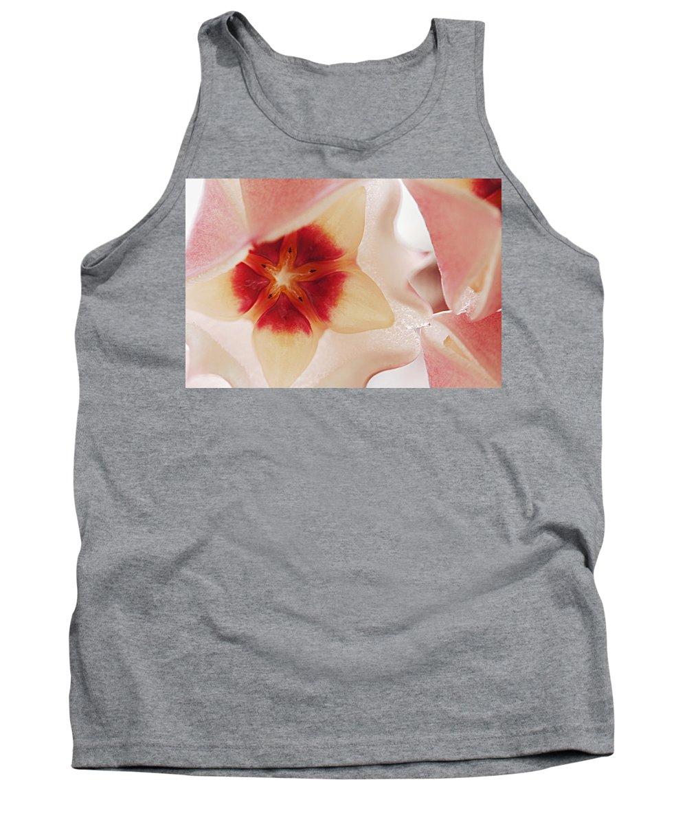 Flower Tank Top featuring the photograph Flower Hoya 3 by Jill Reger