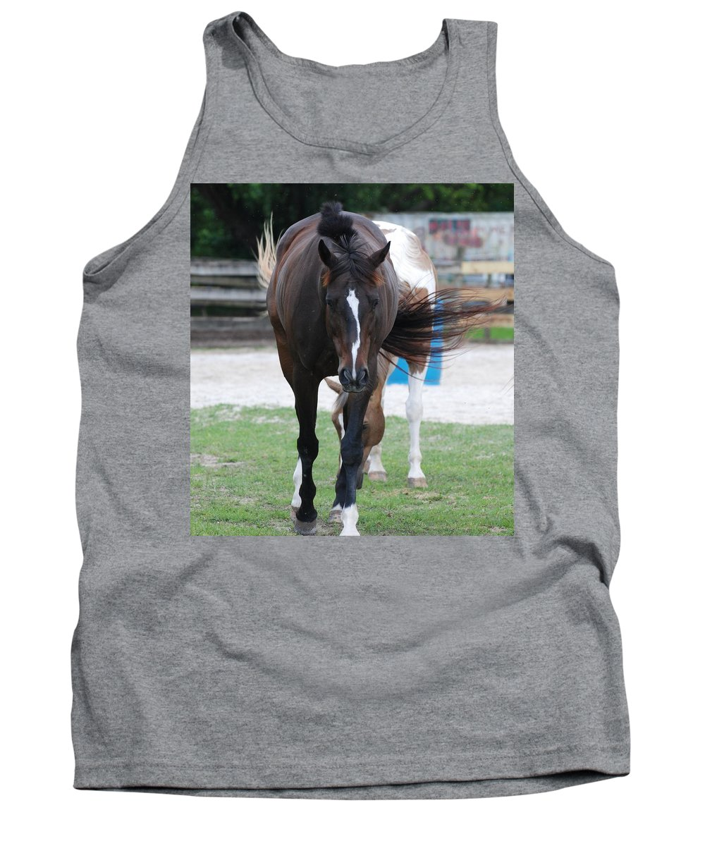 Horses Tank Top featuring the photograph Flying Circus by Rob Hans