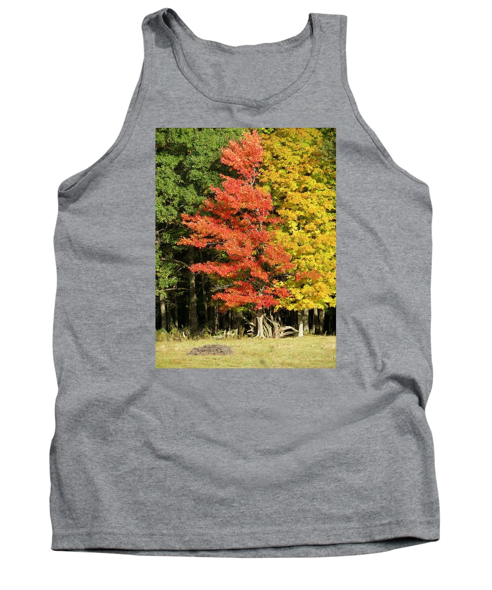 Trees Tank Top featuring the photograph Forest Door by Azthet Photography