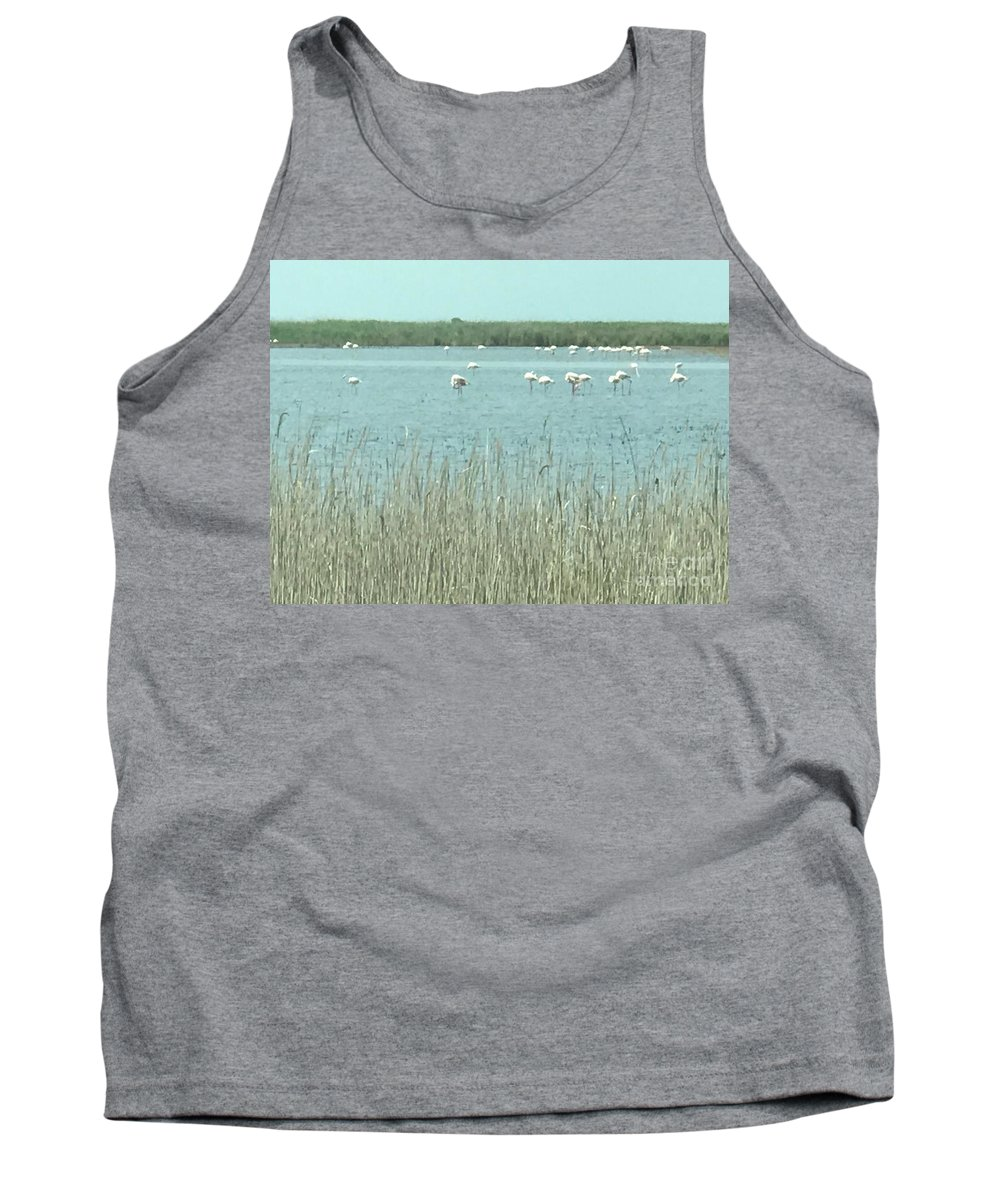 Flamingo Tank Top featuring the photograph French Flamingo Reunion by Nadine Rippelmeyer