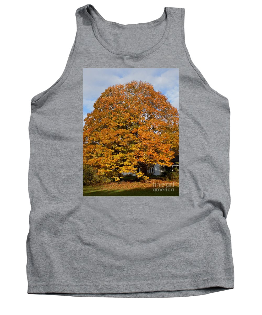 Maple Tree Tank Top featuring the photograph Full On Orange by William Tasker