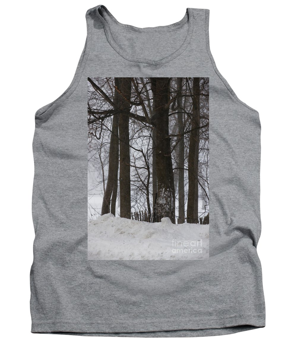 Woods Tank Top featuring the photograph Gentle Giants by Linda Shafer