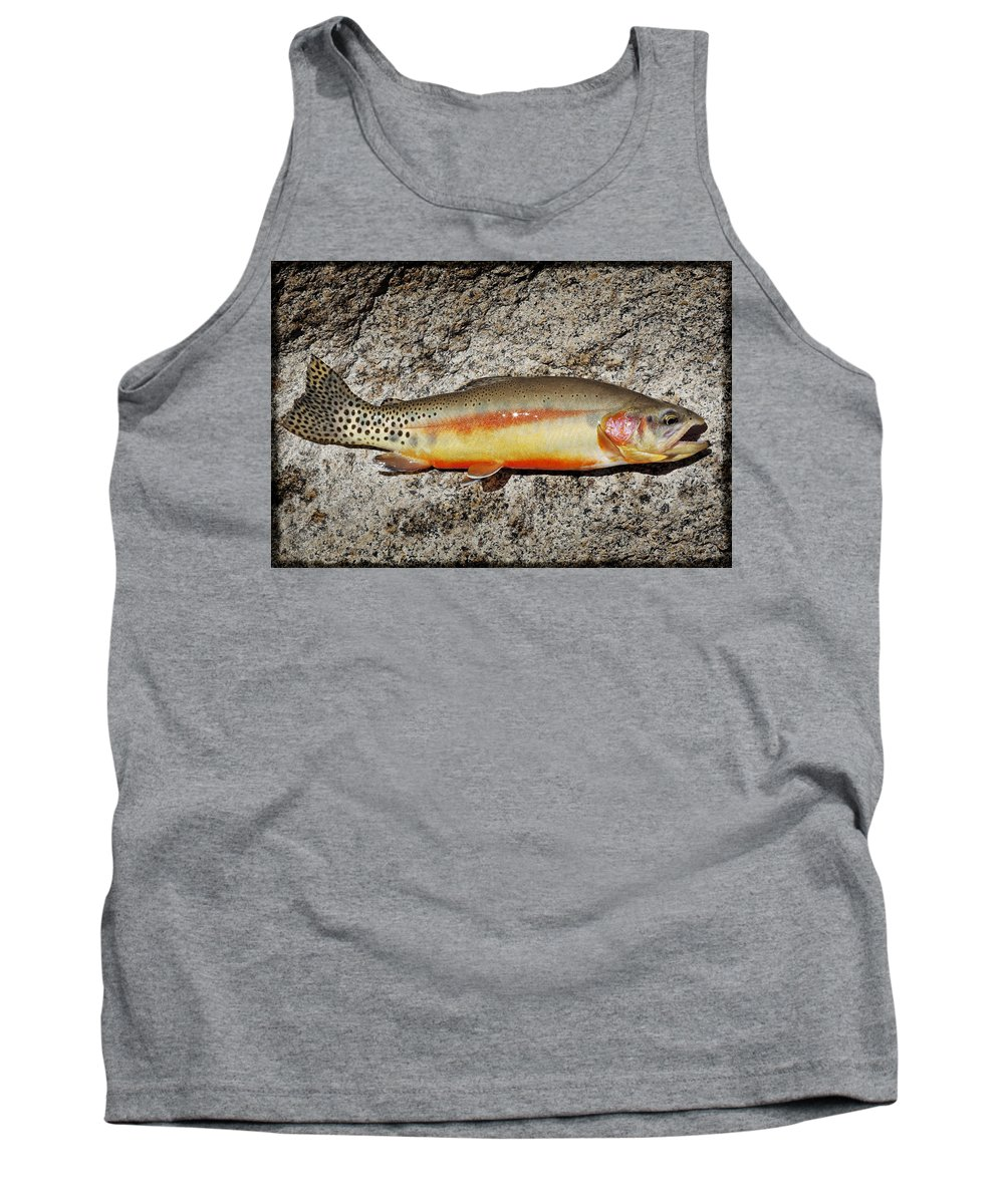 Golden Trout Tank Top featuring the photograph Golden Beauty by Kelley King