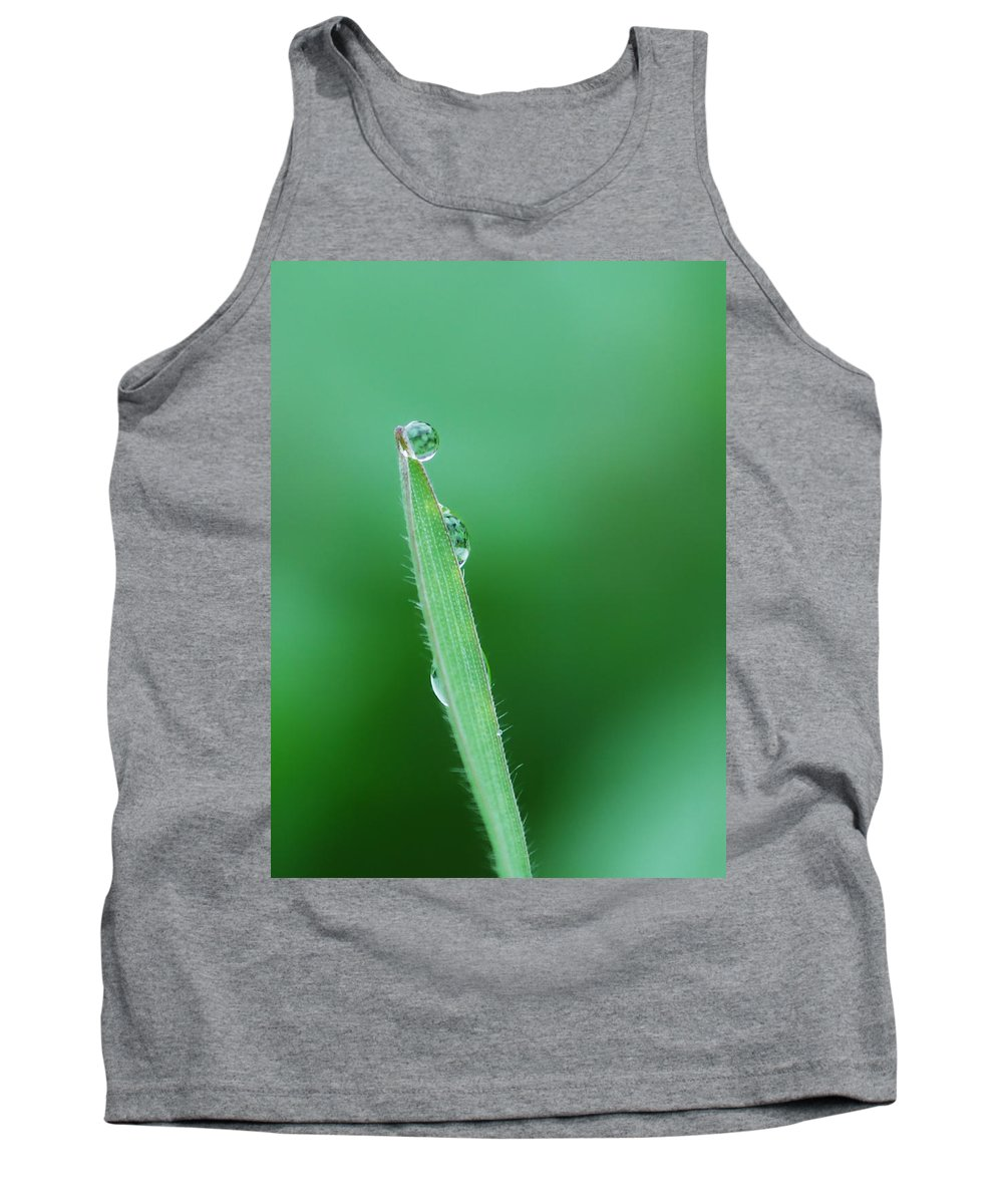 Grass Tank Top featuring the photograph Gravity Defied by Donna Blackhall