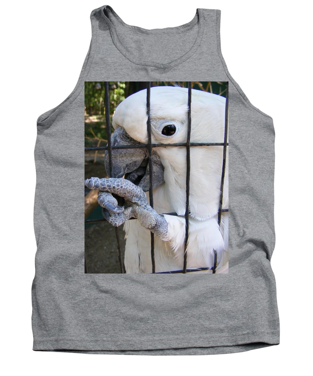 Bird Tank Top featuring the photograph Hand Me The Key Please by Ed Smith