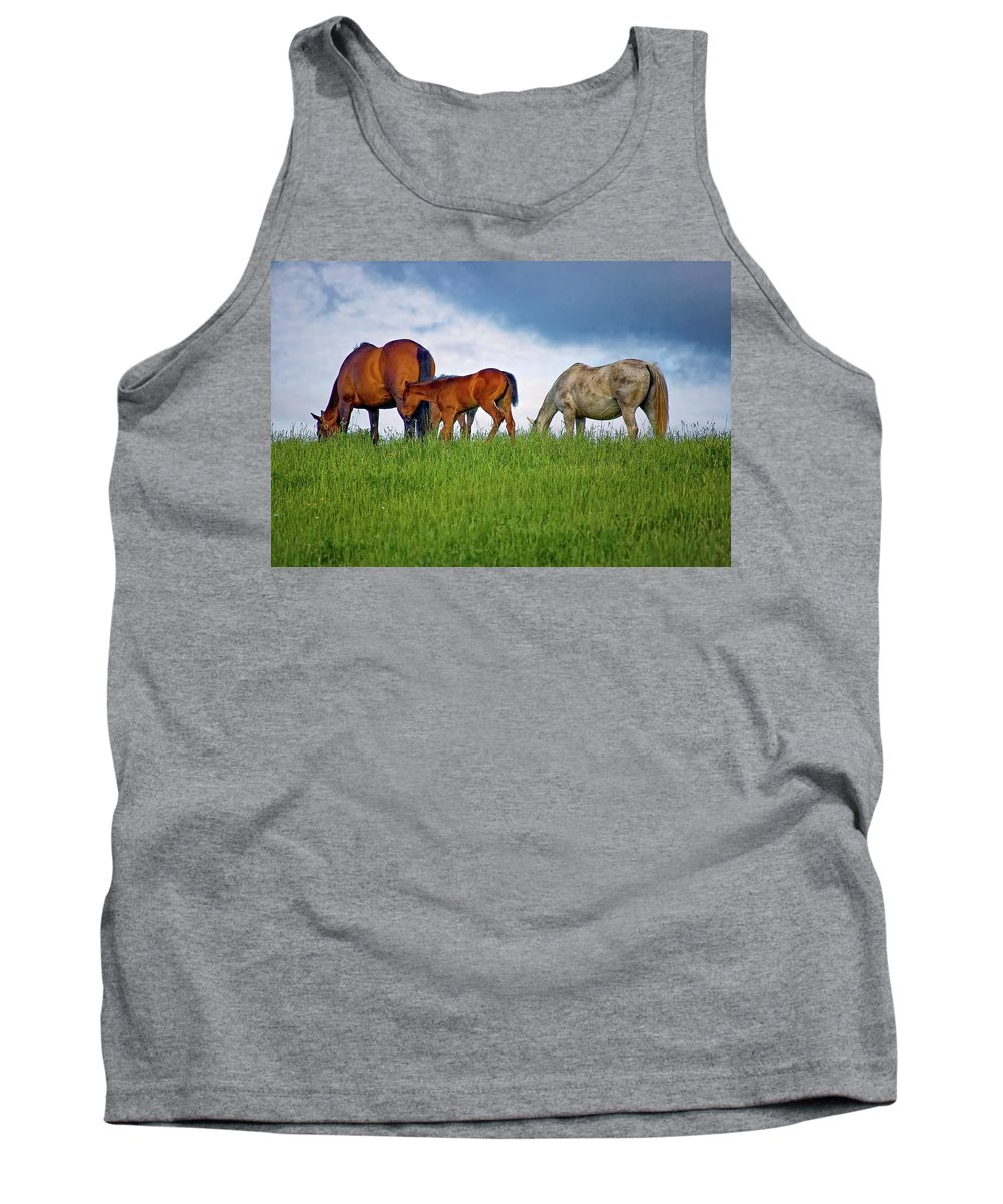 Landscape Tank Top featuring the photograph High Browsers by Steve Harrington