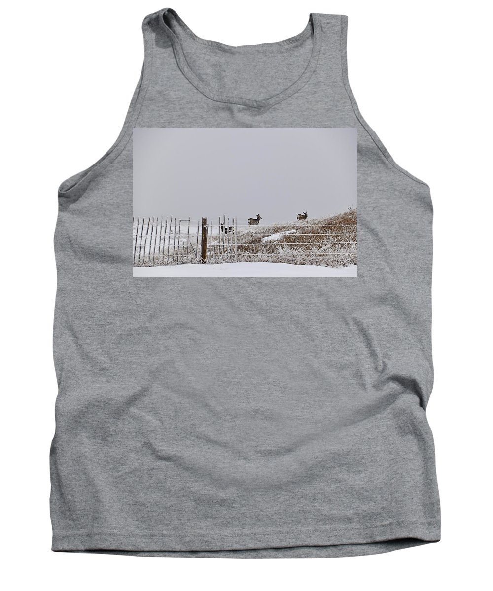 Deer Tank Top featuring the photograph Hills Have Eyes by Kellie Prowse