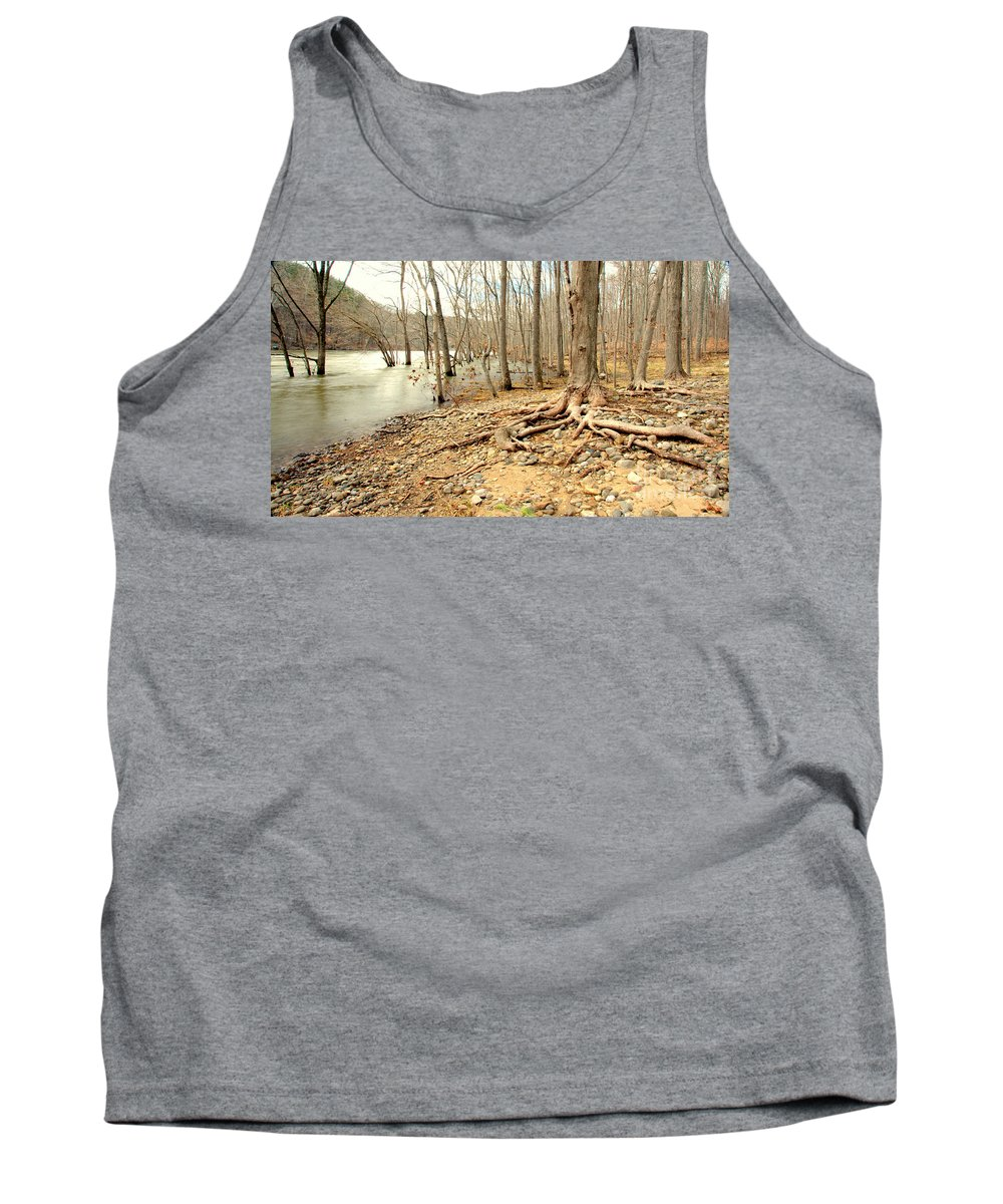 Tree Tank Top featuring the photograph Holding On by Cj Mainor