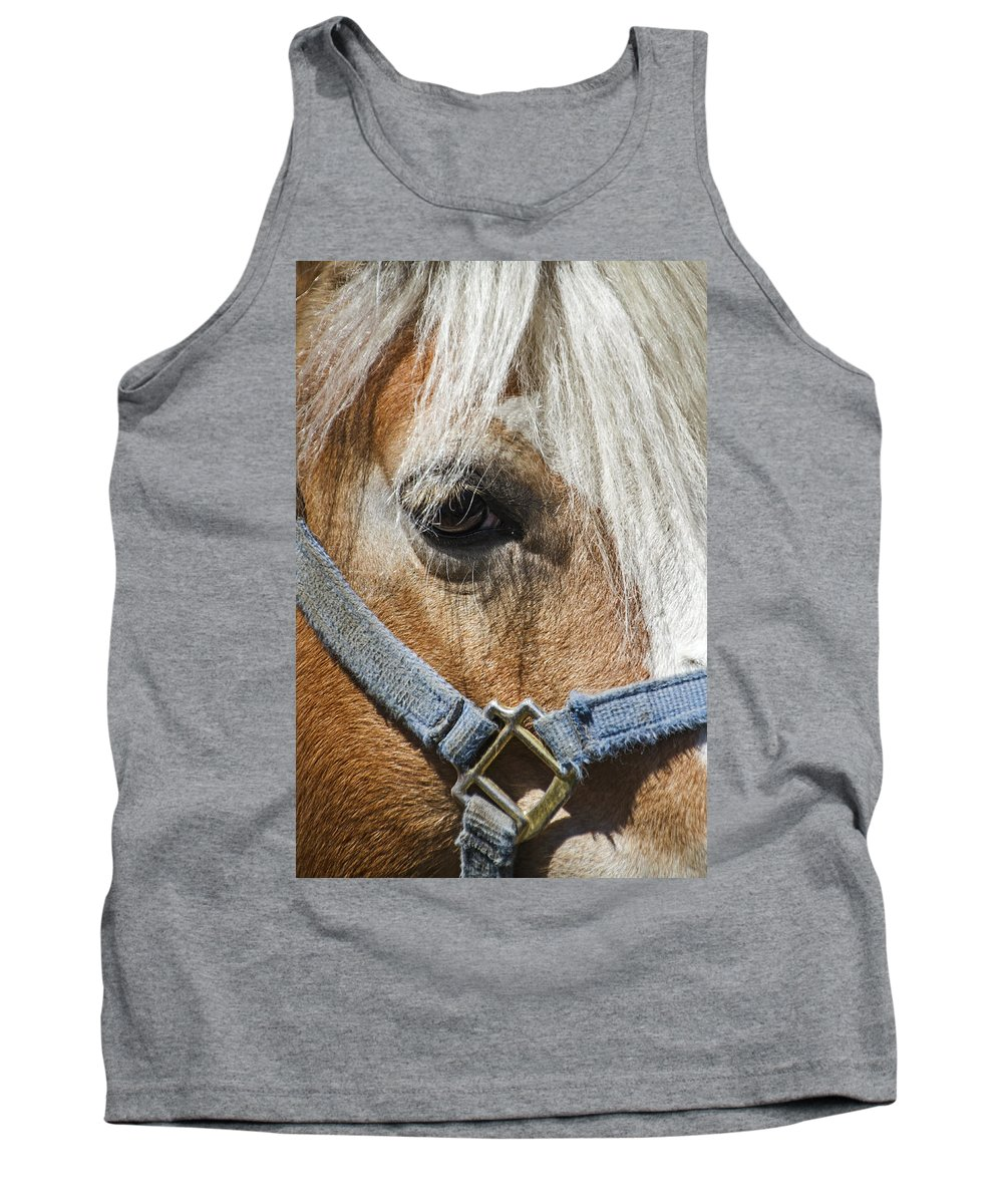 Horse Tank Top featuring the photograph Horse Close Up by Bob Slitzan