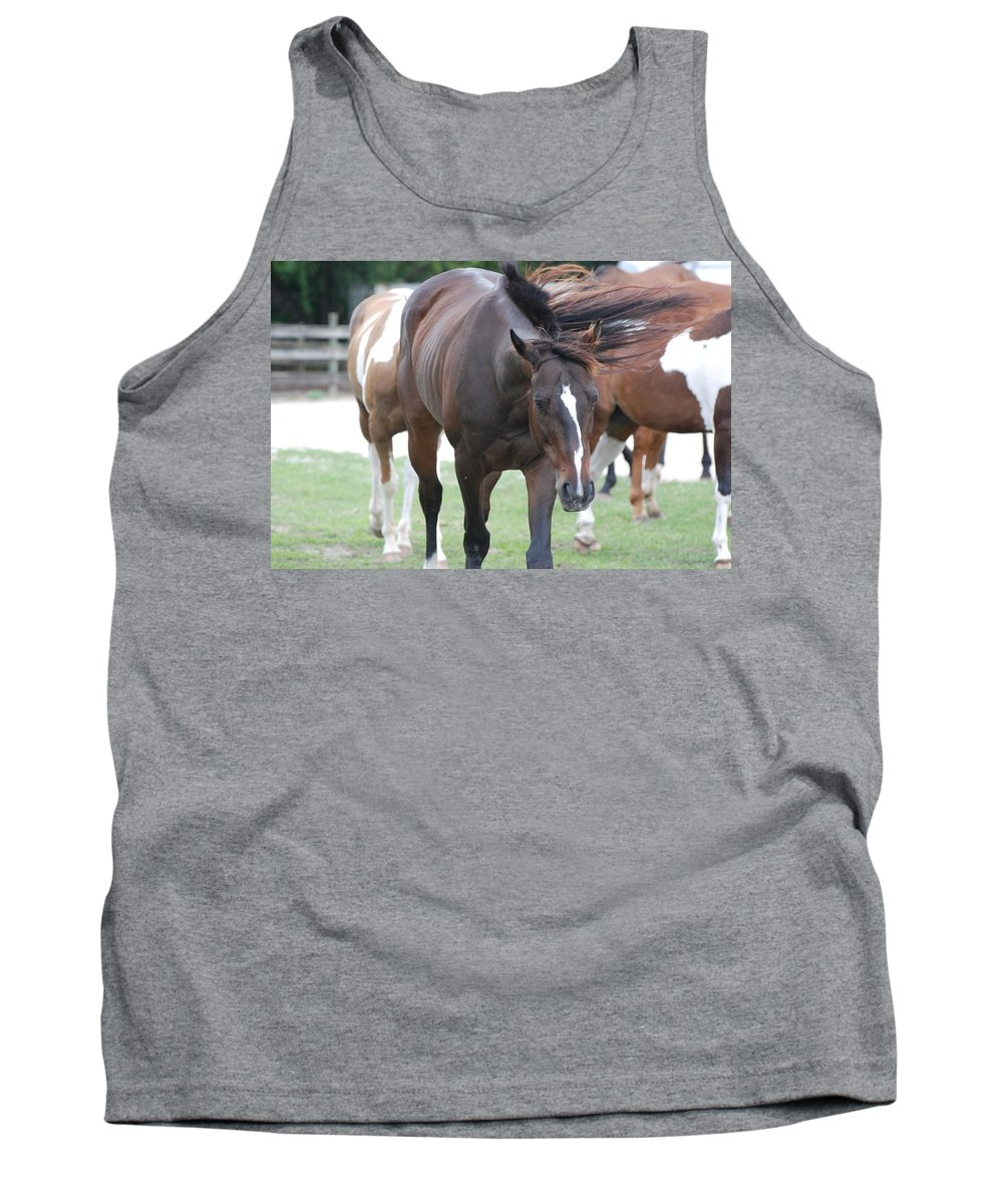 Horses Tank Top featuring the photograph Horses by Rob Hans