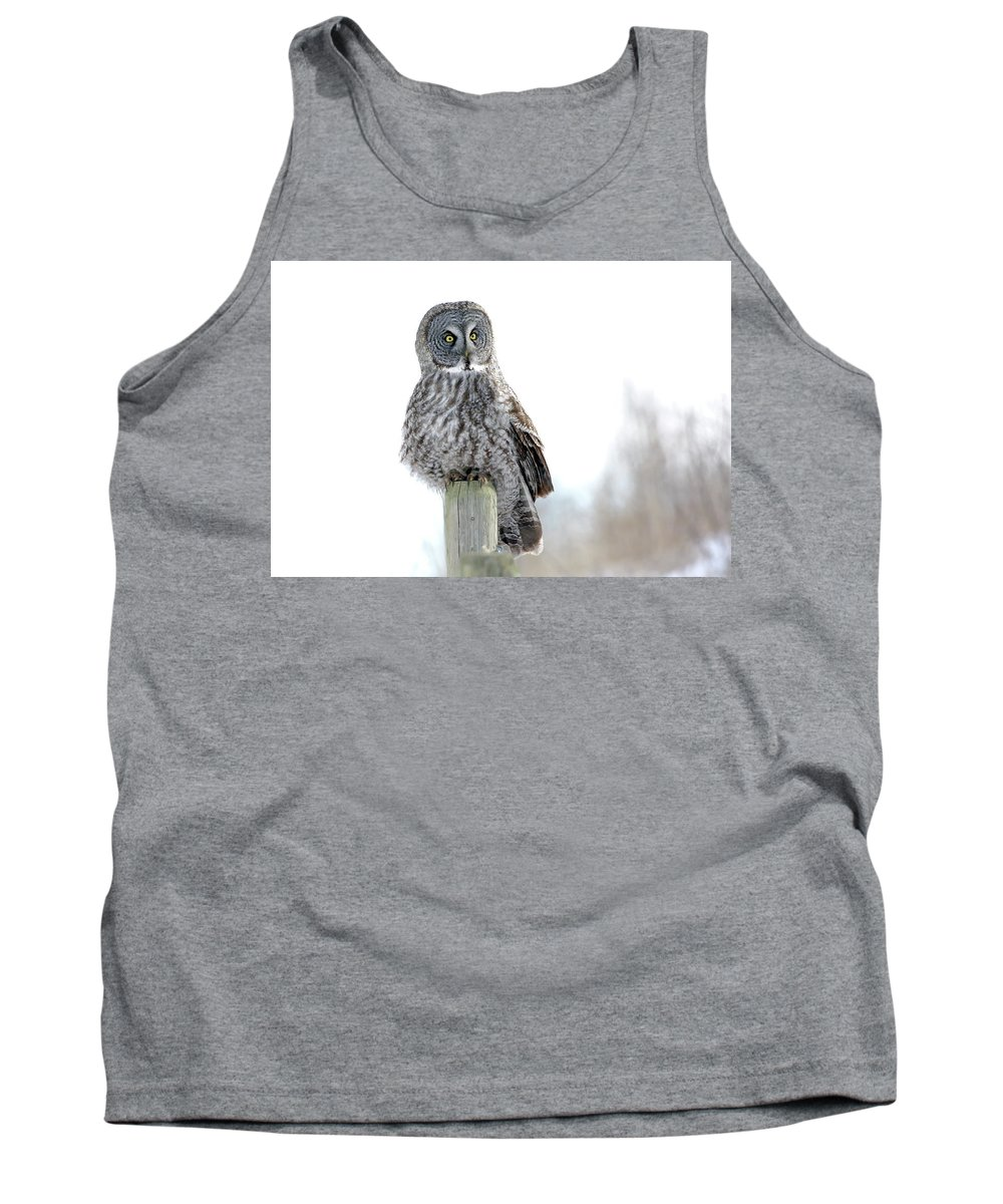 Nature Tank Top featuring the photograph Hunting Break by Crystal Massop