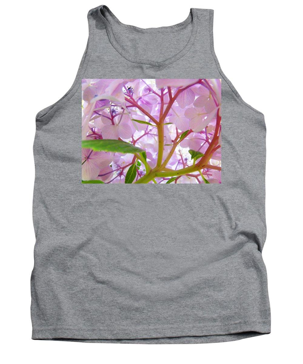 Hydrangea Tank Top featuring the photograph Hydrangeas Flowers Art Prints Hydrangea Art Giclee Baslee Troutman by Baslee Troutman