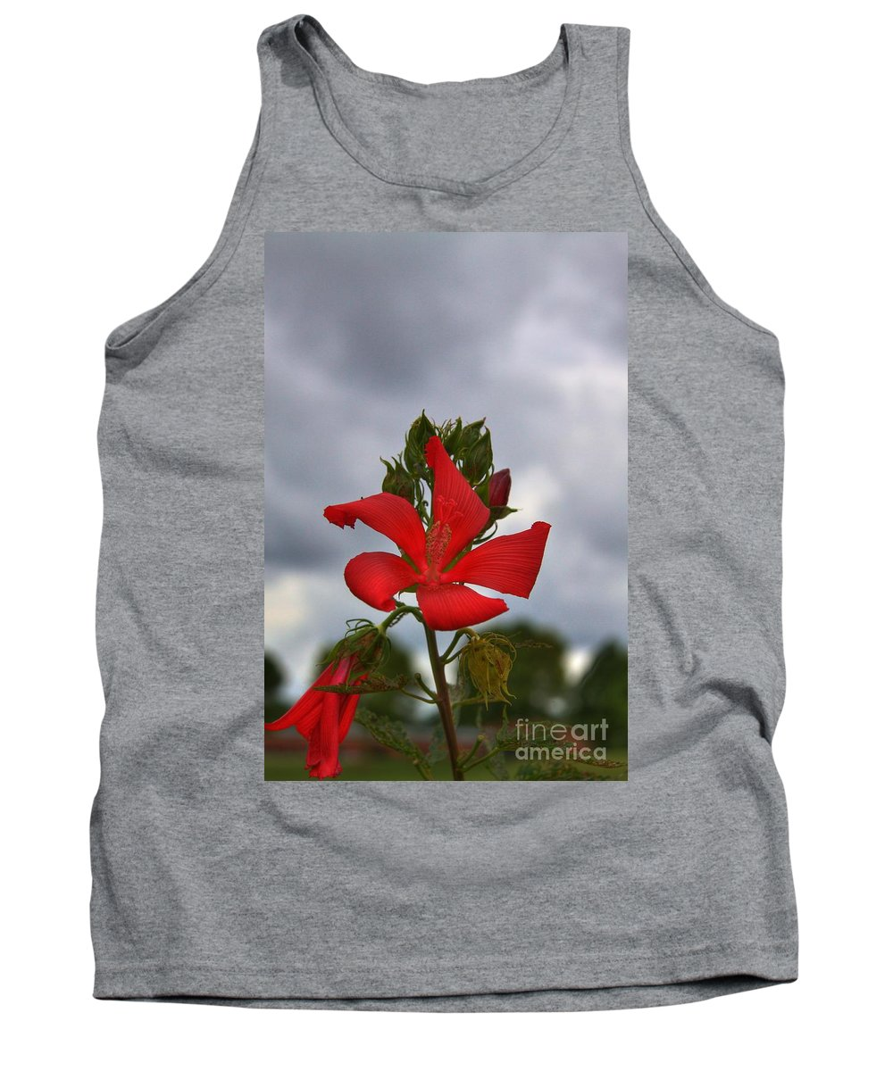 Related Tags: Tank Top featuring the photograph I Will Remember You Always by Robert Pearson