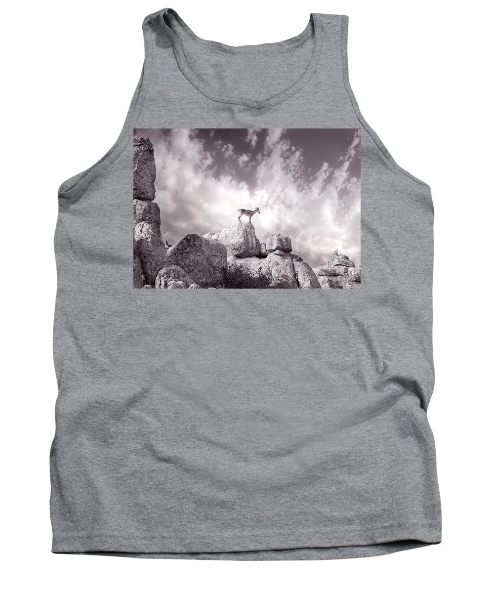 Ibex Tank Top featuring the photograph Ibex -the Wild Mountain Goats In The El Torcal Mountains Spain by Mal Bray