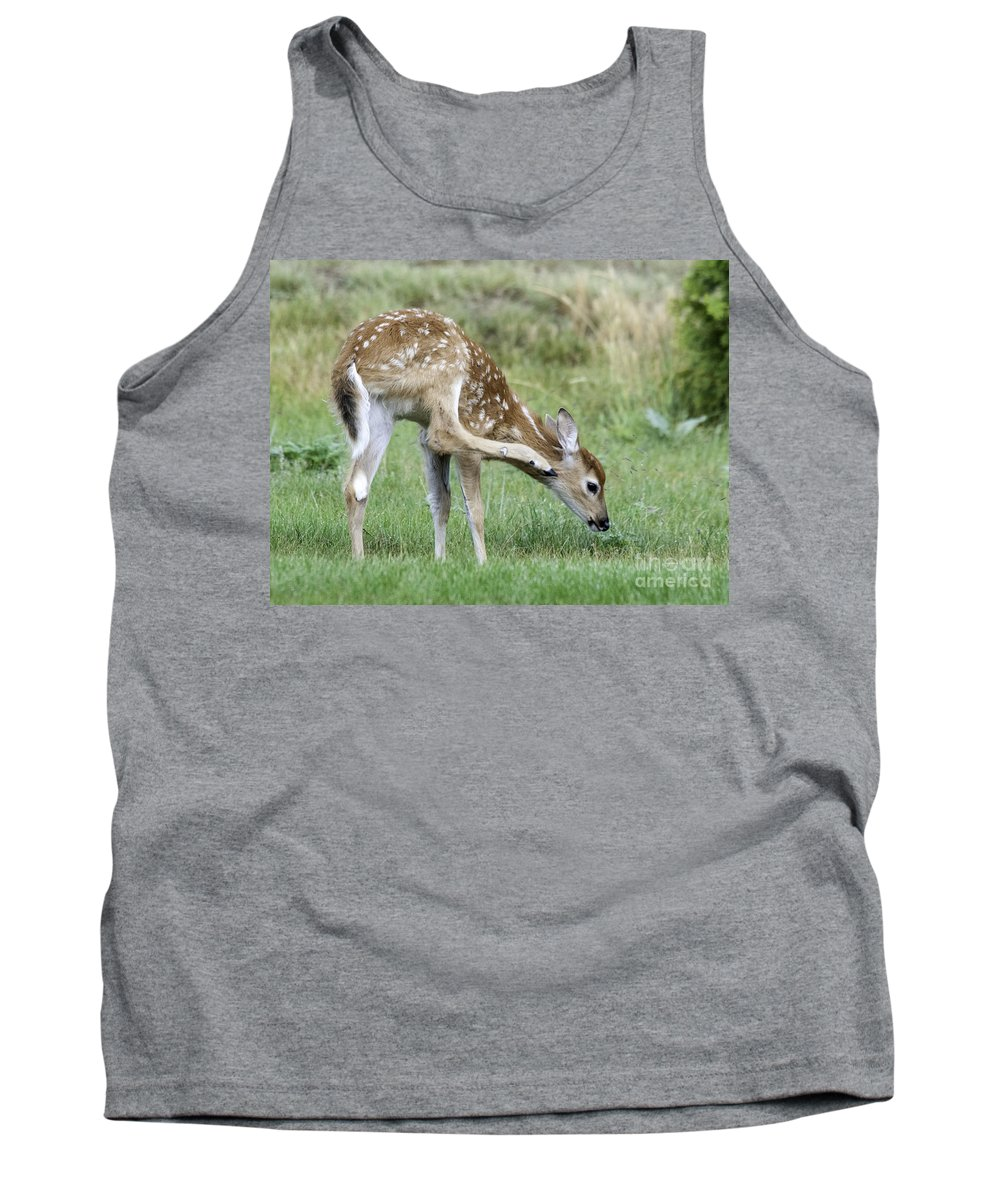 Whitetail Tank Top featuring the photograph Itchy Fawn by Gary Beeler
