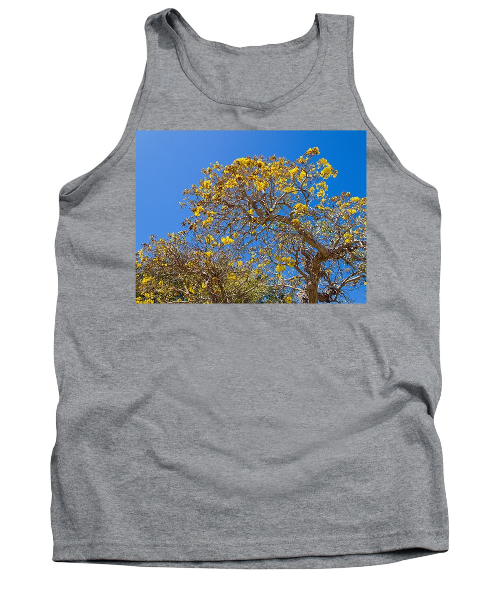 Florida; Tree; Plant; Flower; Flowering; Blossom; Blossoming; Jerusalem; Thorn; Possom; Mexican; Pal Tank Top featuring the photograph Jerusalem Thorn Tree by Allan Hughes