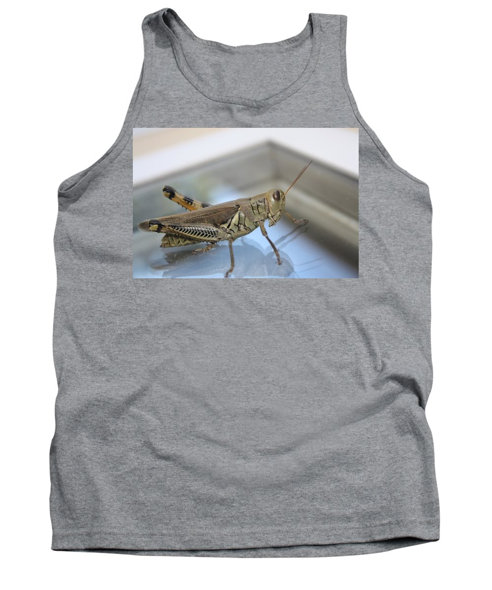 Insect Tank Top featuring the photograph Jumpy by Erin Rosenblum