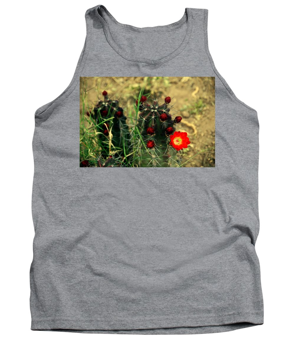 Cactus Tank Top featuring the photograph Like A Little Red Star by Susanne Van Hulst