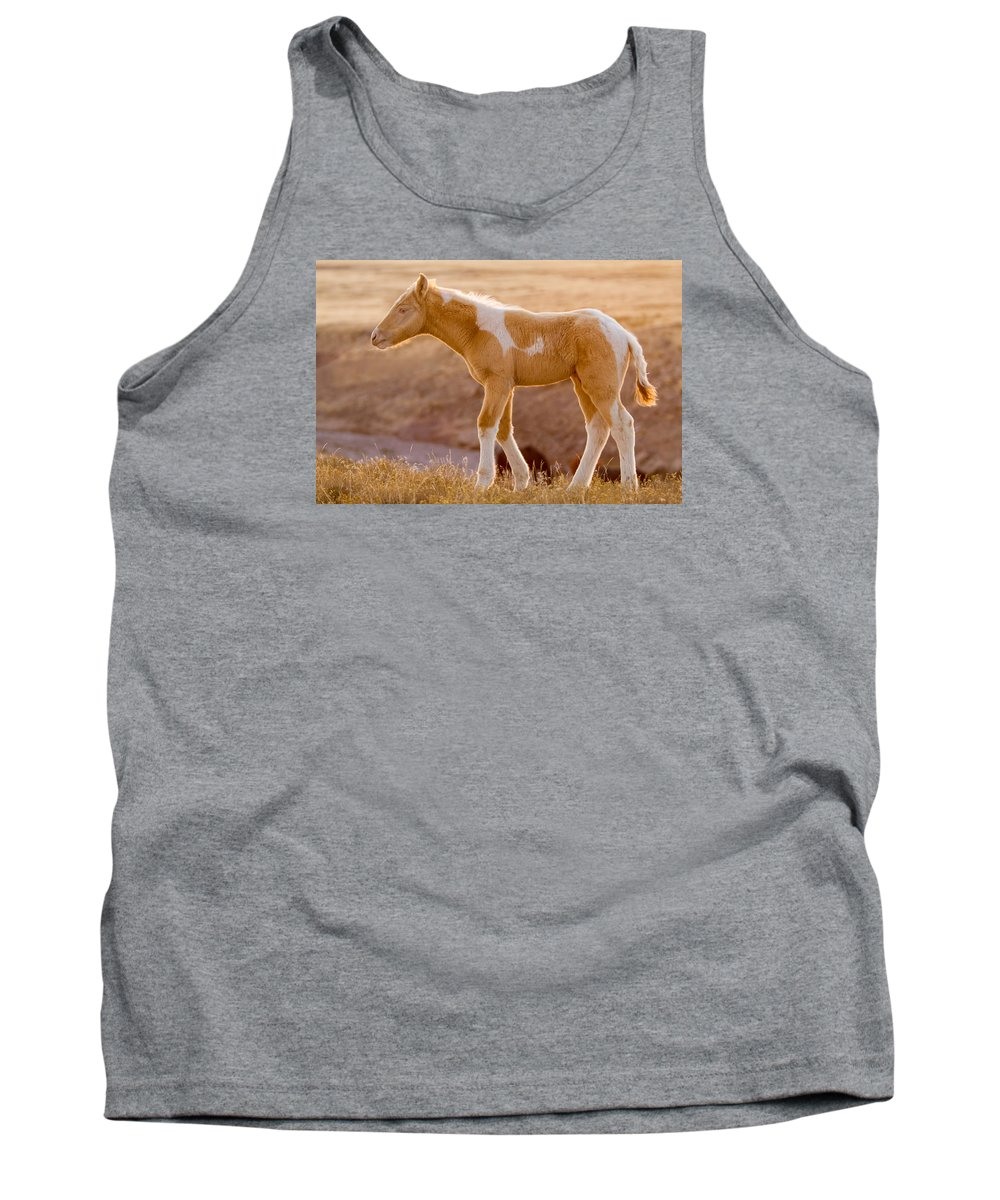 Wild Horse Tank Top featuring the photograph Little Brother by Kent Keller