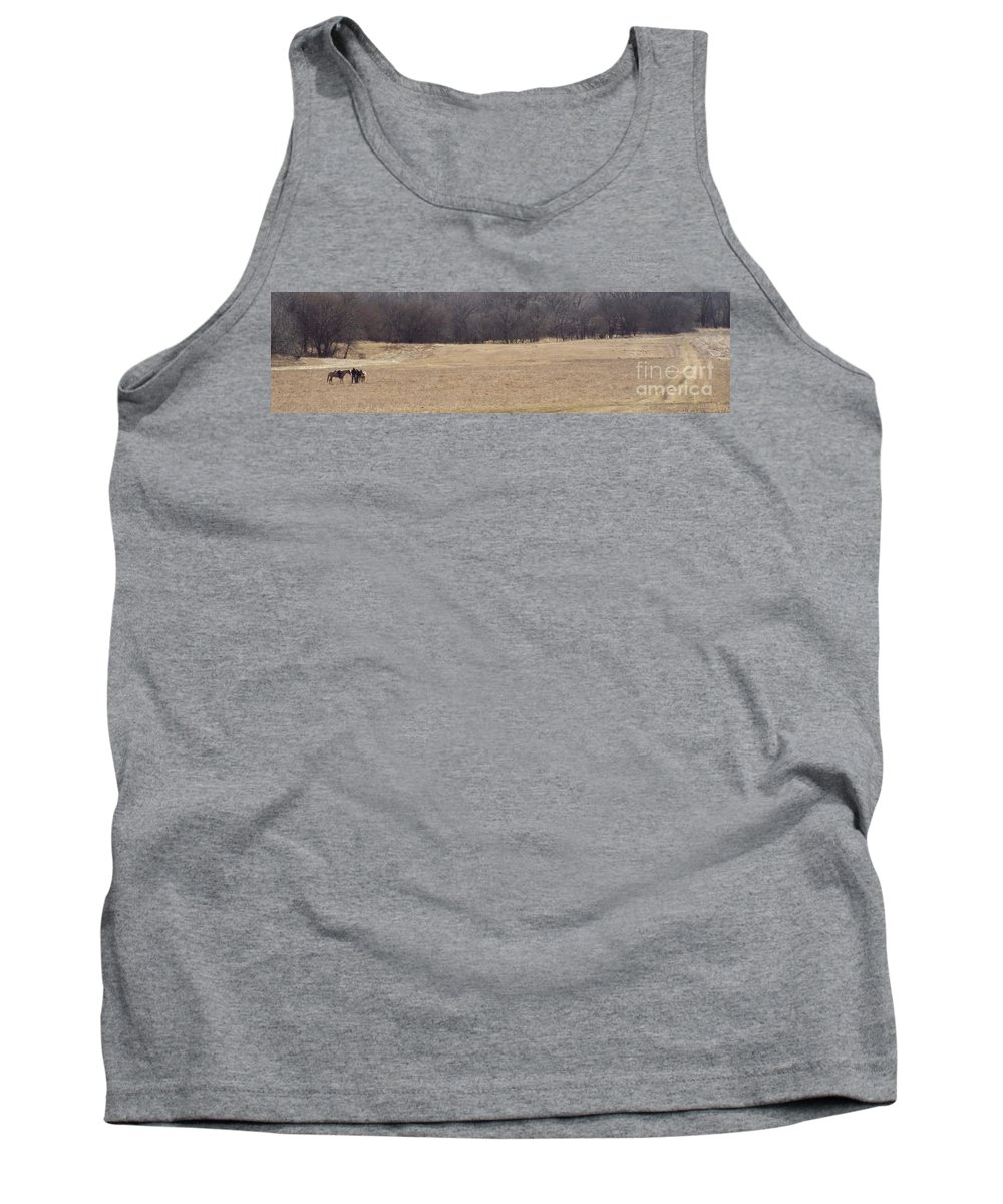 Horse Tank Top featuring the photograph Long Trail Home by Caryl J Bohn