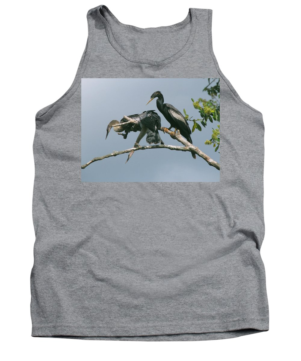 Nature Tank Top featuring the photograph Long Way Down by Peg Urban