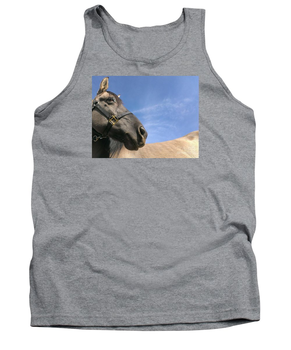 Horse Tank Top featuring the photograph Looking Behind by LKB Art and Photography