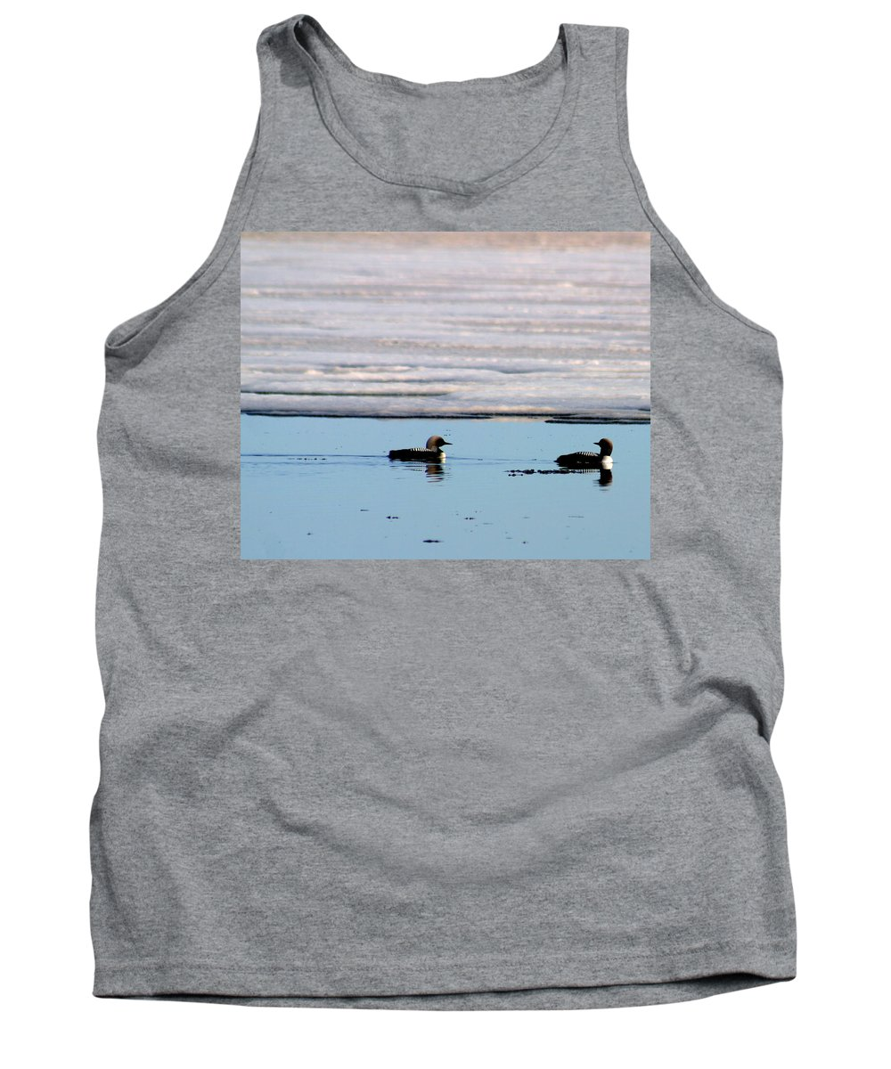 Loons Tank Top featuring the photograph Loon On The Arctic by Anthony Jones
