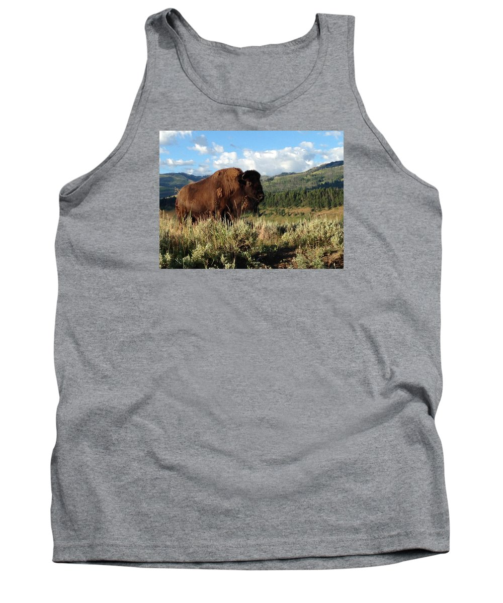 Photography Tank Top featuring the photograph Majestic Bison by Michelle Fairchild