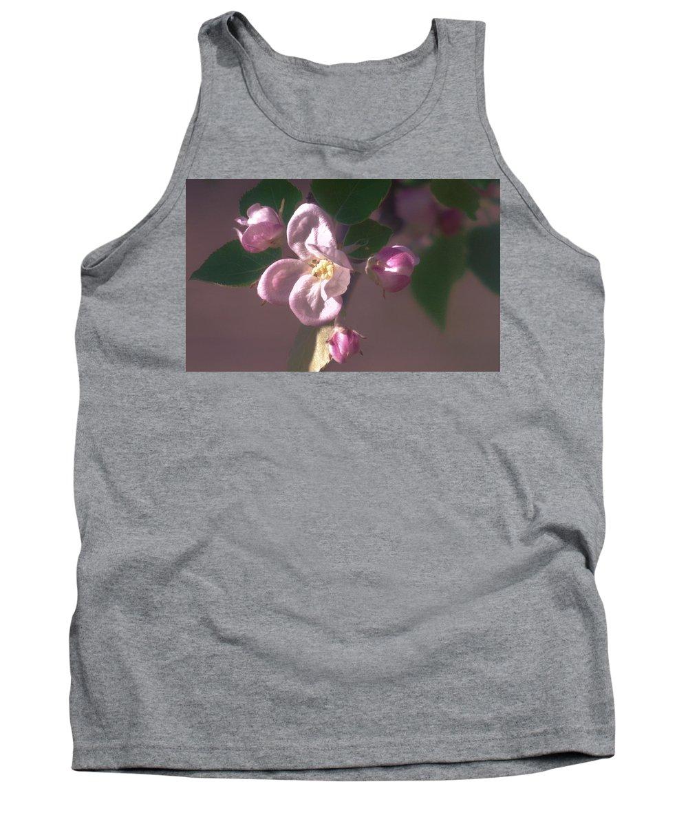 Designs Similar to Mauve Blossom
