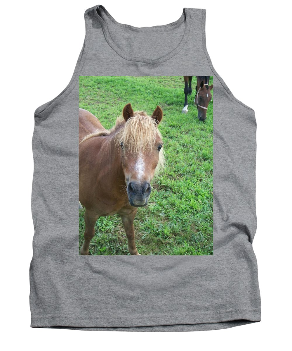 Miniture Tank Top featuring the painting Miniature Horse by Eric Schiabor