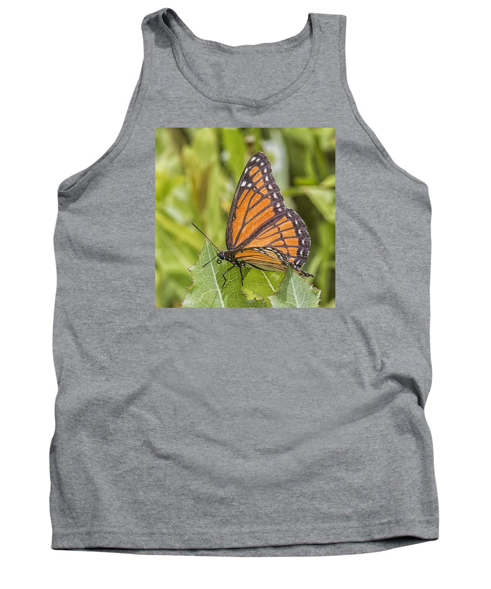 Monarch Tank Top featuring the photograph Monarch by Sue Matsunaga