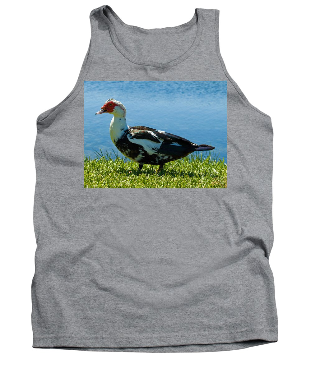 Muscovy; Duck; Bird; Fowl; Florida; Waterbird; Waterfowl; Feral; Domesticate; Wild; Native; Ugly; Du Tank Top featuring the photograph Muscovy Ducks Are Butt-ugly by Allan Hughes