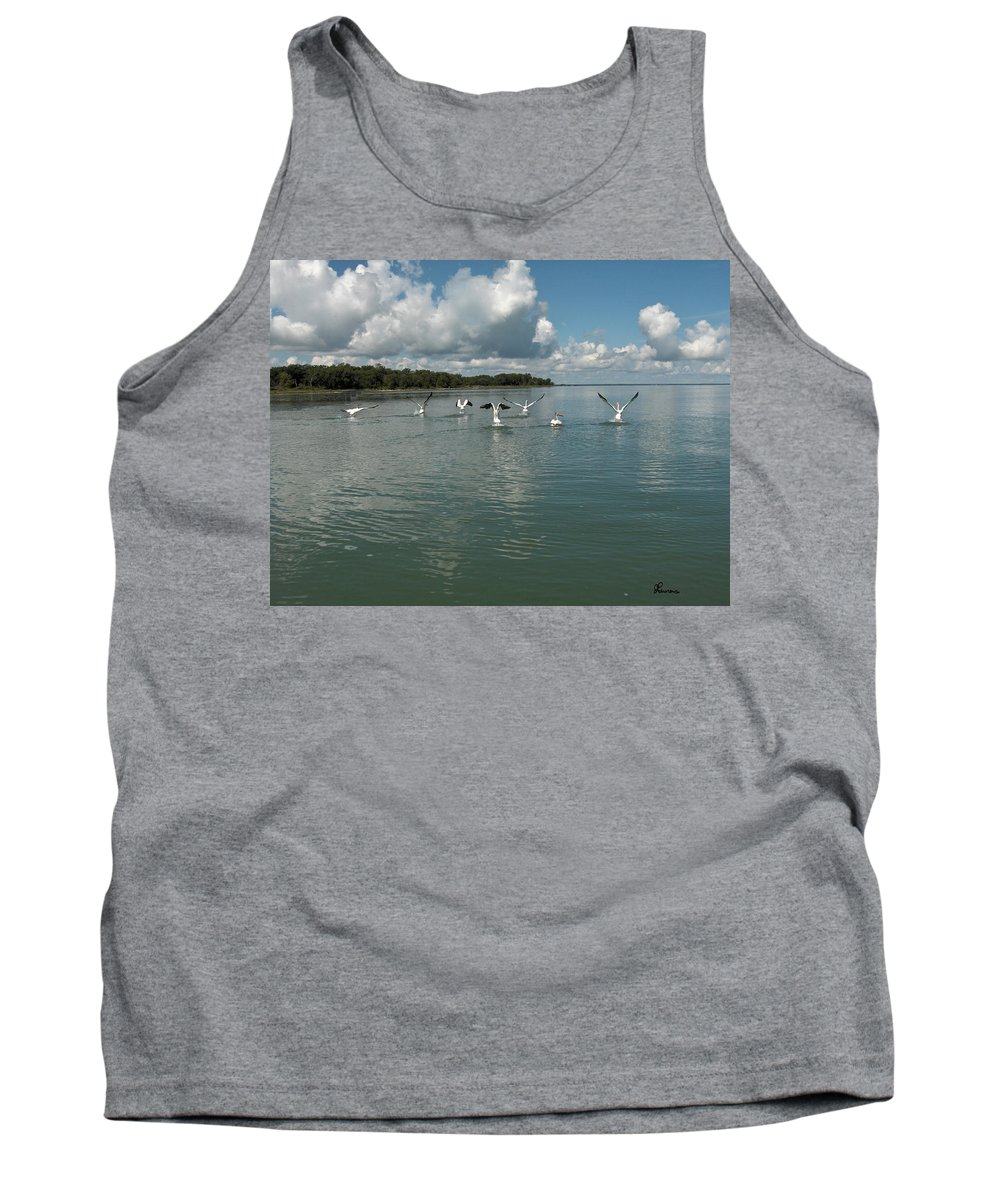 Pelicans Lake Water Trees Shore Beach Clouds Birds Water Foul Tank Top featuring the photograph My Pelicans by Andrea Lawrence