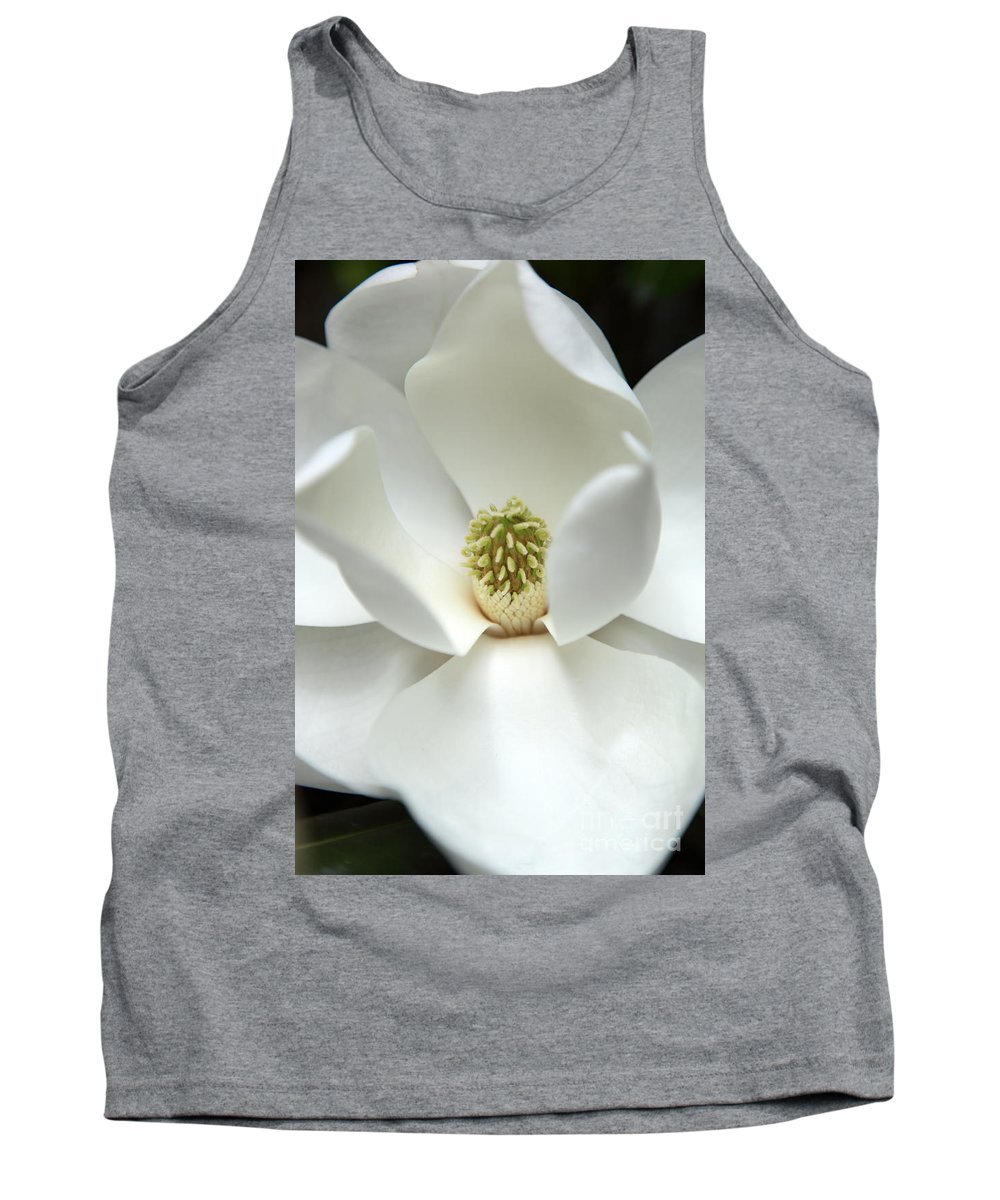 Magnolia Tank Top featuring the photograph Mysteriously by Amanda Barcon