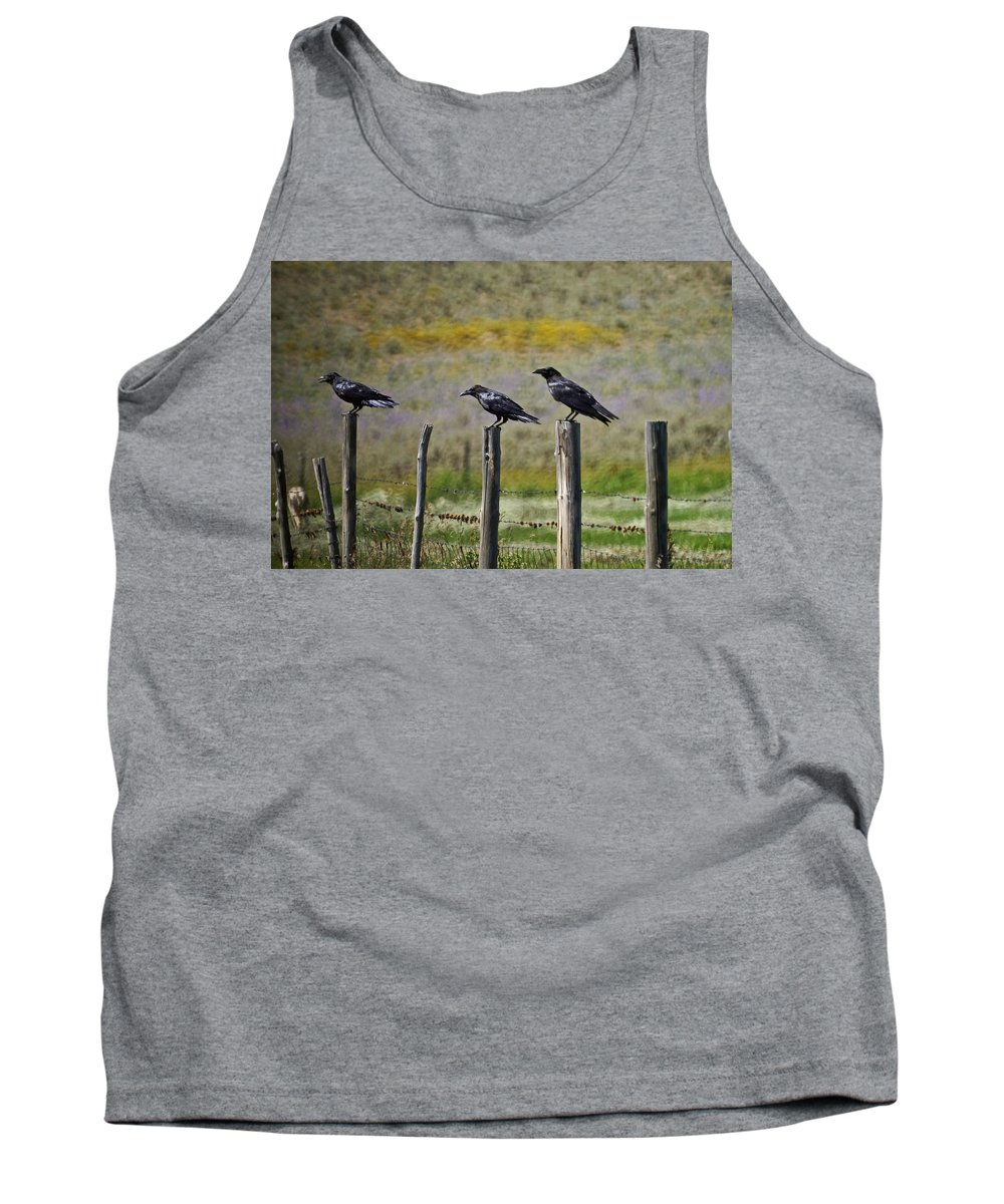 Crows Tank Top featuring the photograph Neighborhood Watch Crows by Heather Coen