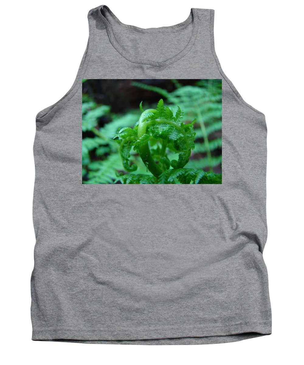 Fern Tank Top featuring the photograph Office Art Fern Fround Forest Ferns Art Prints Baslee Troutman by Baslee Troutman